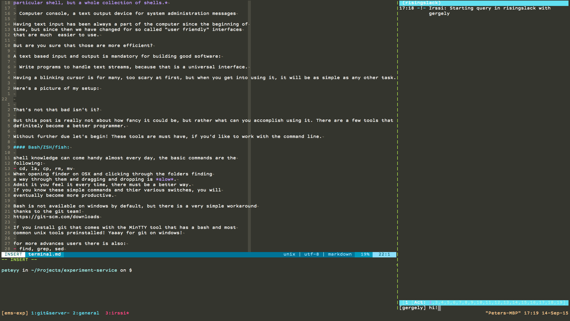Peteyy's terminal setup for NodeJS development