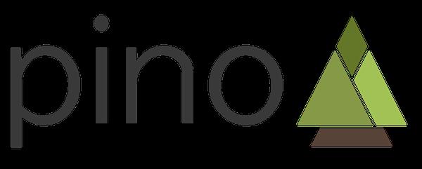 Pino logger module